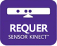 Requires Kinect Sensor